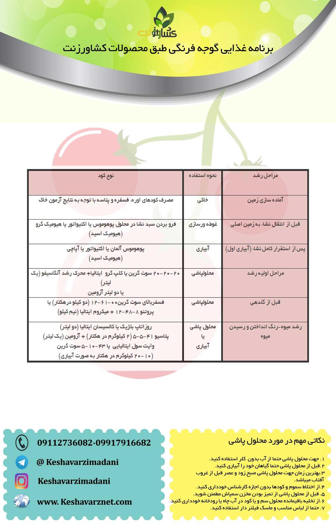 برنامه-غذایی-گوجه