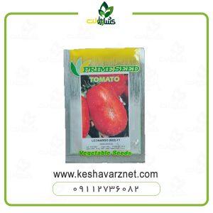 بذر گوجه لئوناردو