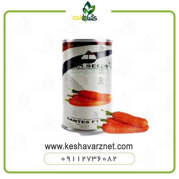 بذر هویج هیبرید