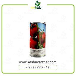 بذر گوجه تانیا