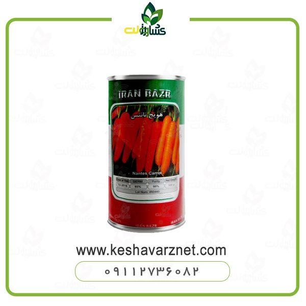 بذر هویج نانتس کشیده ایرانی