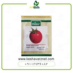 بذر گوجه فرنگی ثمین