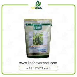 بذر خیار گلخانه ای گالاردو
