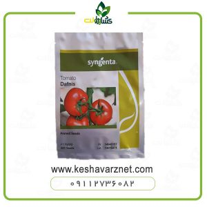 بذر-گوجه-دافنیس