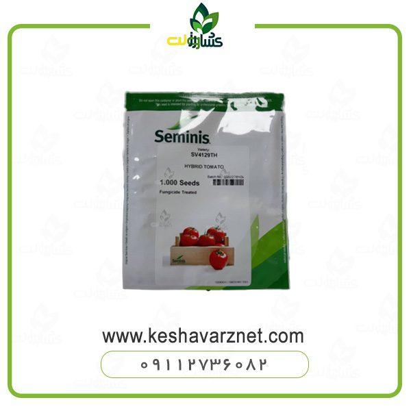 بذر گوجه 4129