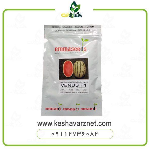 بذر هندوانه سوپر دارگون