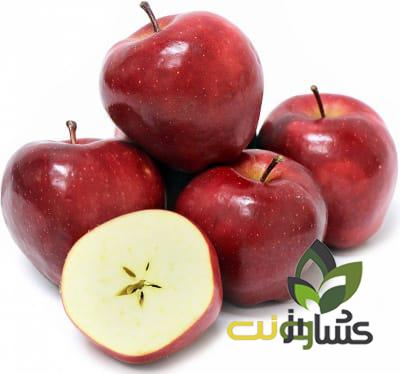 کود-برای-سیب