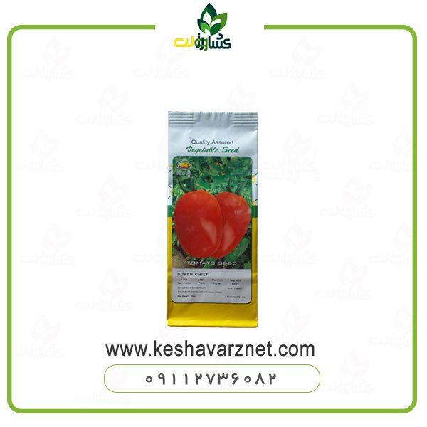 بذر-گوجه-سوپرچف-راین